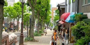 Kitano 设有 城市, 街道景色 和 購物