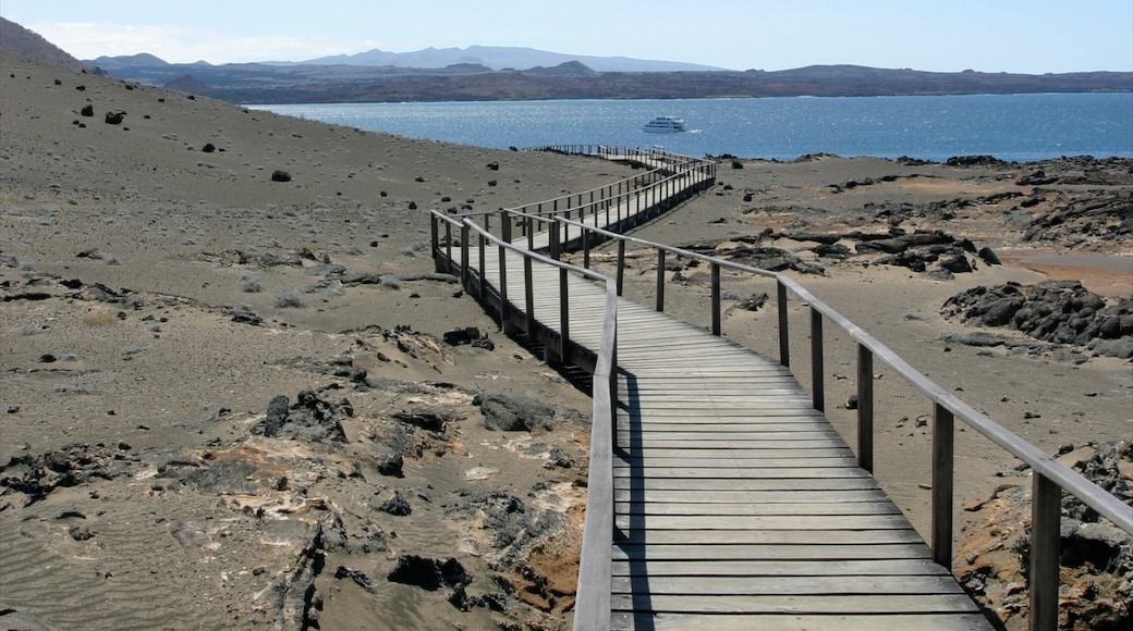 Ecuador showing a bridge, general coastal views and landscape views