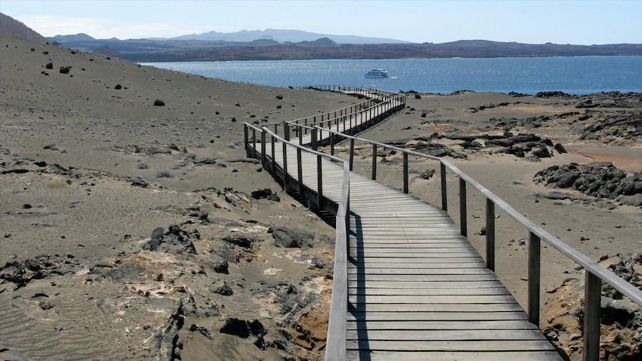 Ecuador which includes a bridge, landscape views and general coastal views