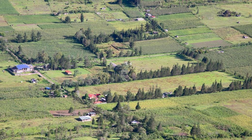 Quito que incluye vistas de paisajes y escenas tranquilas