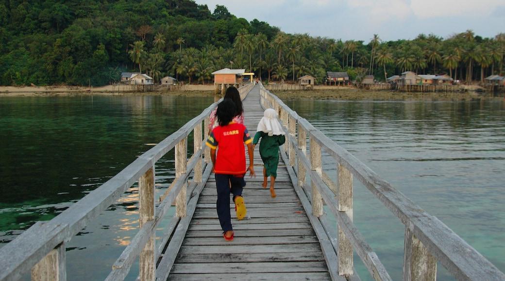 Îles Riau