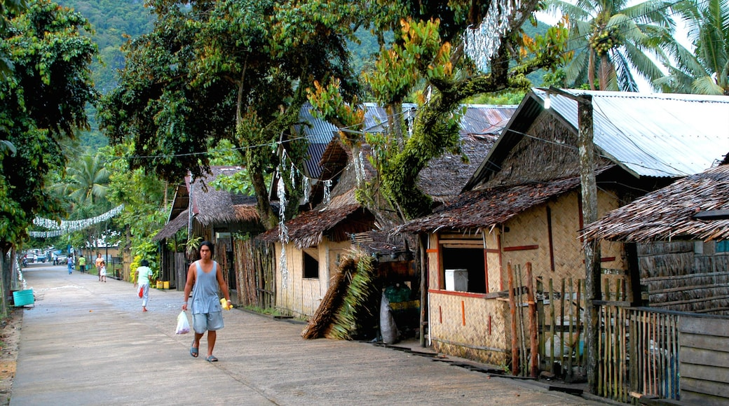 Palawan featuring a house, street scenes and a small town or village