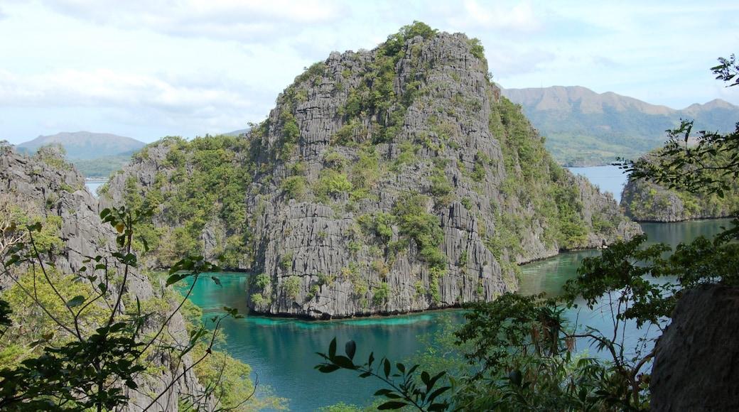 Palawan featuring mountains, general coastal views and landscape views