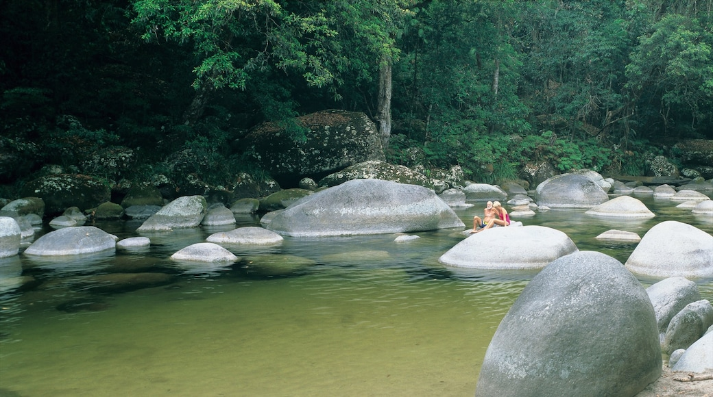 Daintree - Cape Tribulation featuring a river or creek, forest scenes and landscape views