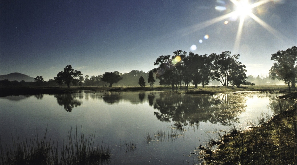 Albury showing a sunset, landscape views and a river or creek