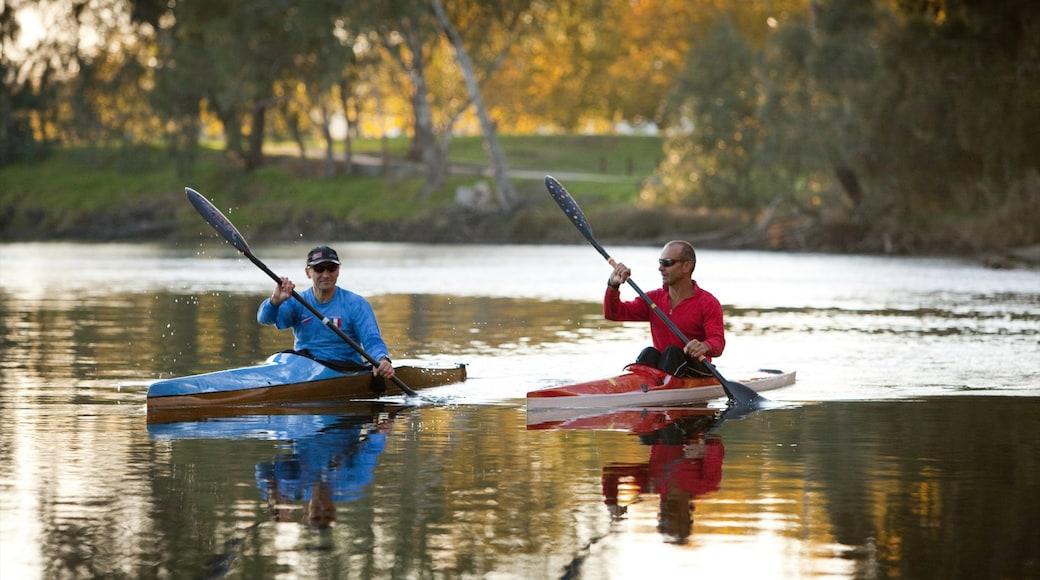 Albury featuring kayaking or canoeing