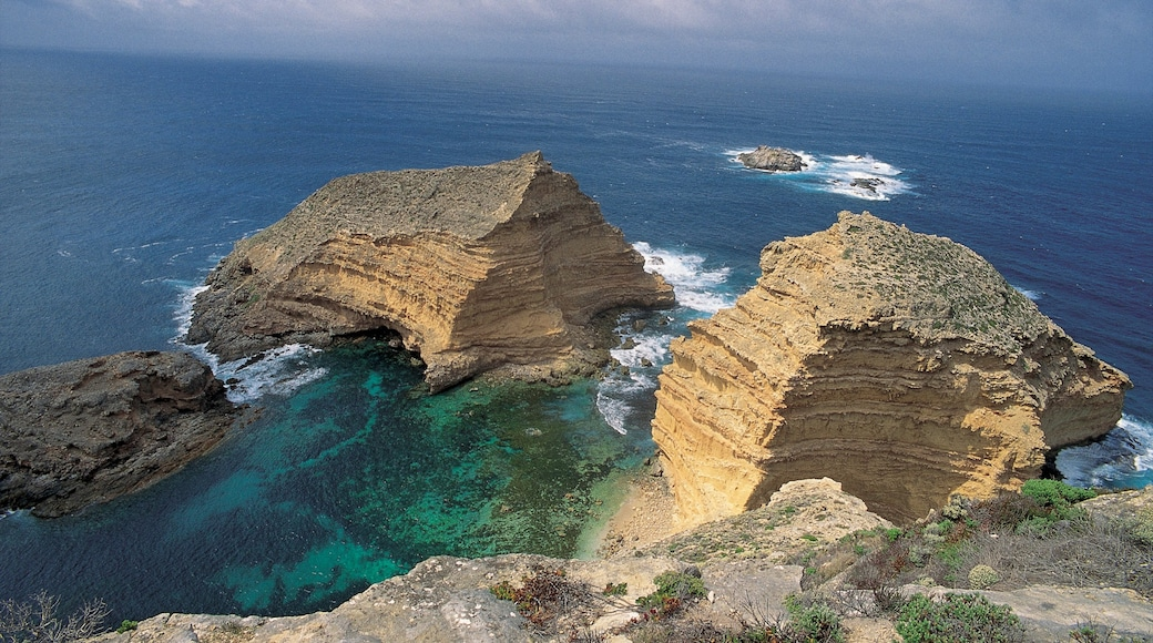 Port Lincoln showing landscape views and rugged coastline