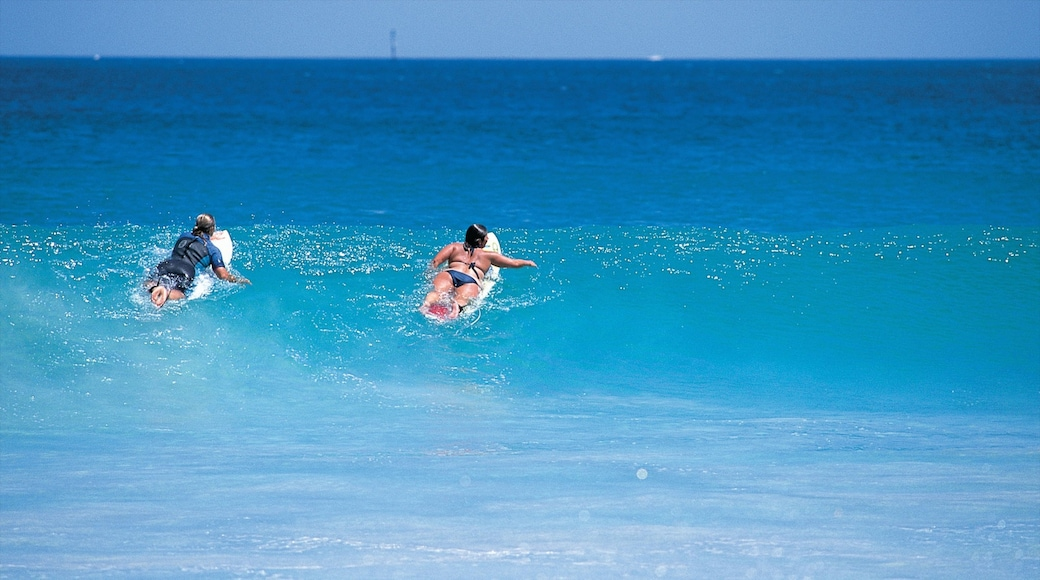 Mandurah which includes surfing and surf