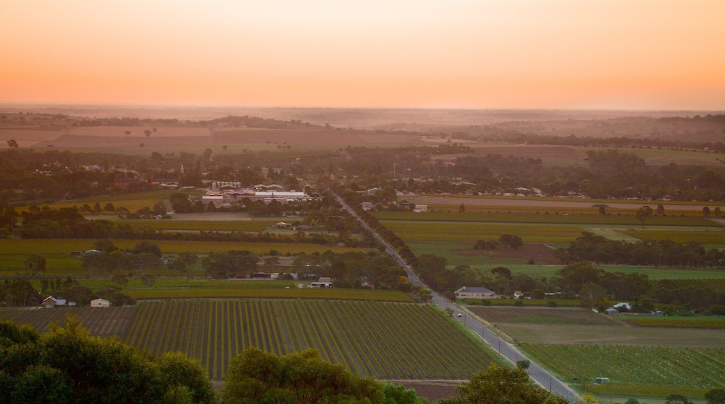 Barossa Valley which includes a sunset, farmland and a small town or village