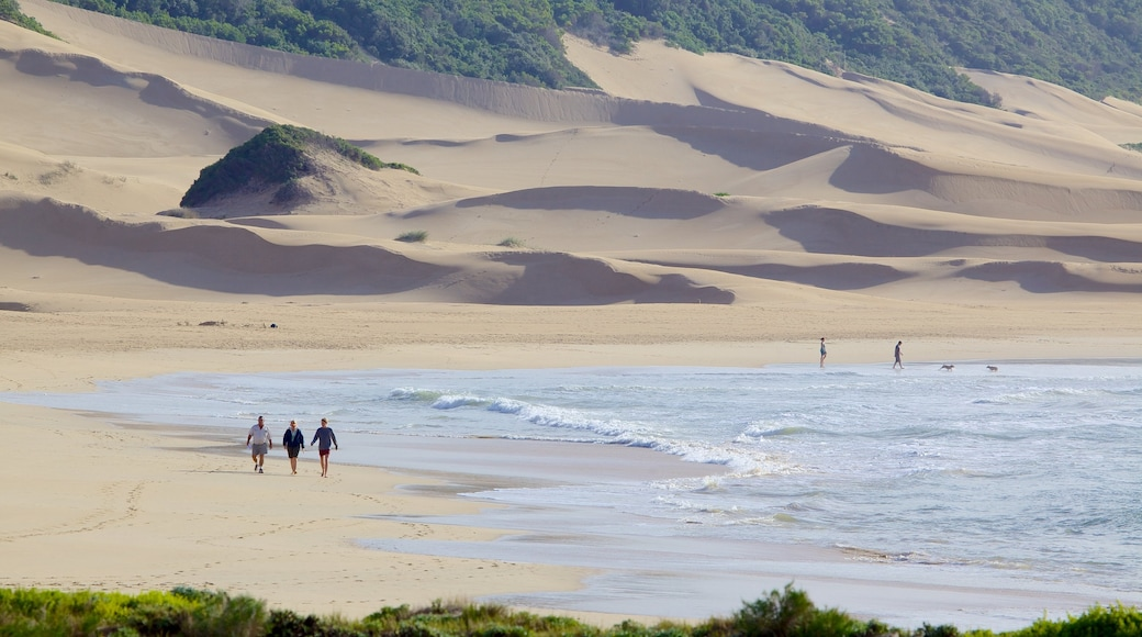 Port Alfred showing landscape views and a sandy beach