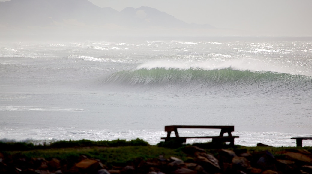 Port Alfred which includes surf, landscape views and general coastal views