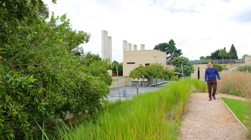 Apartheid Museum mettant en vedette jardin aussi bien que homme