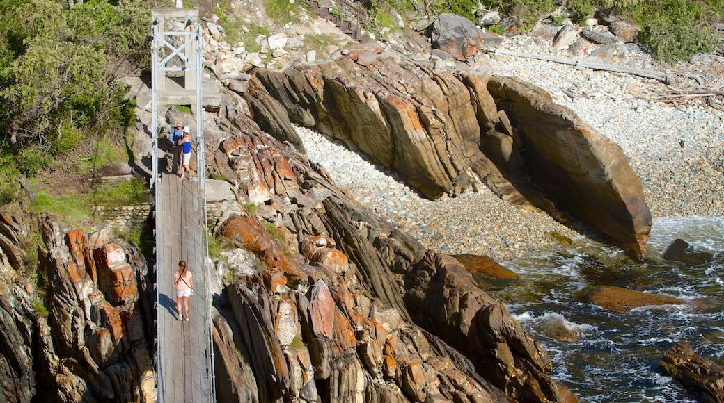 Tsitsikamma National Park das einen Fluss oder Bach und Brücke
