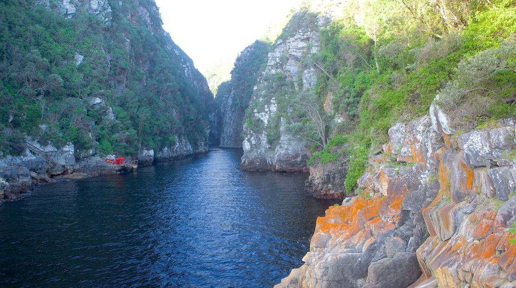 Tsitsikamma National Park das einen Landschaften, Fluss oder Bach und Schlucht oder Canyon