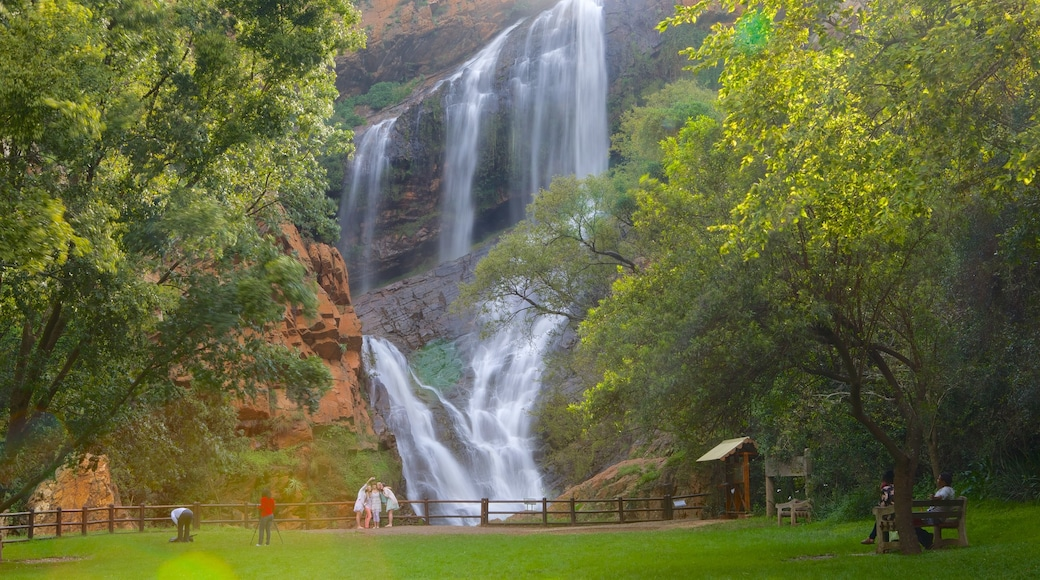 Walter Sisulu Botanical Gardens which includes a waterfall and a garden