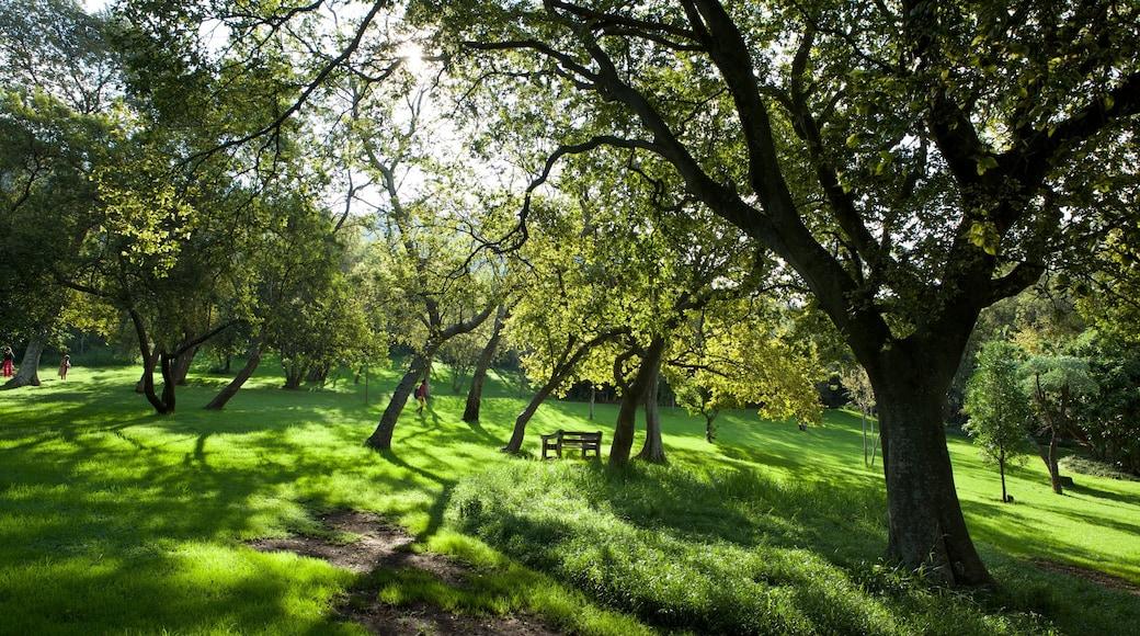 Walter Sisulu Botanical Gardens showing landscape views and a garden