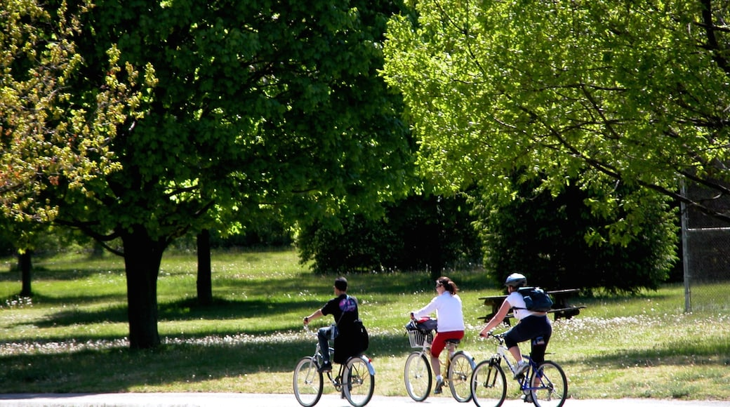 Centre Island showing a park, landscape views and cycling