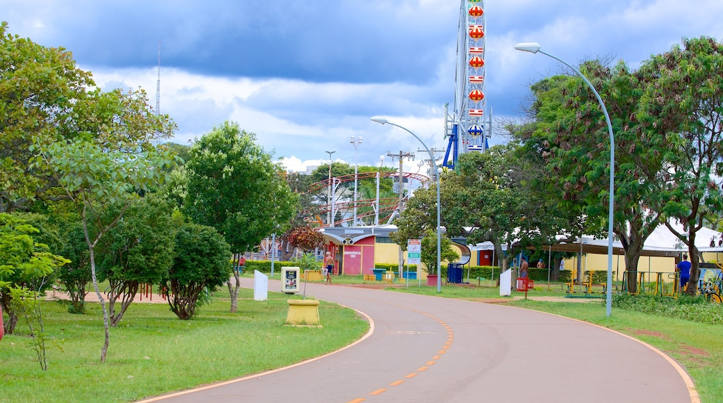 City Park featuring rides and a park