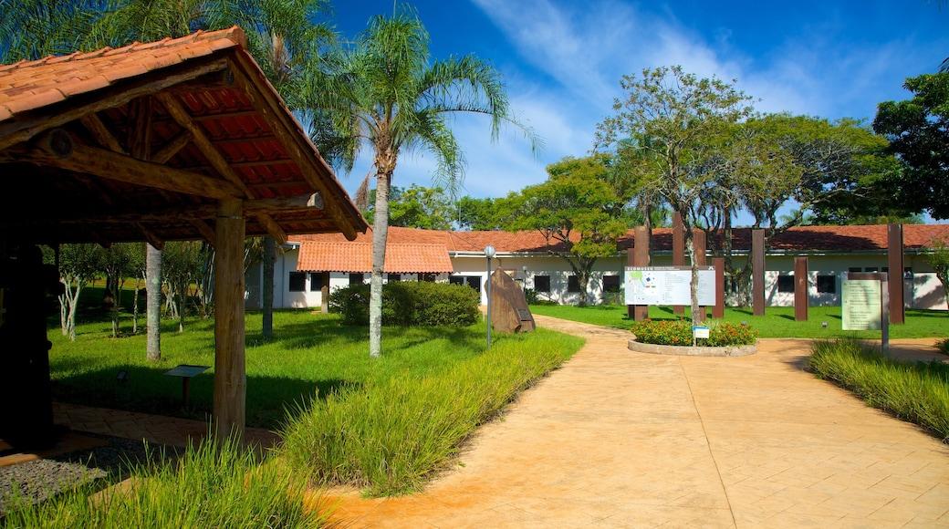 Museo Ecológico que incluye un parque