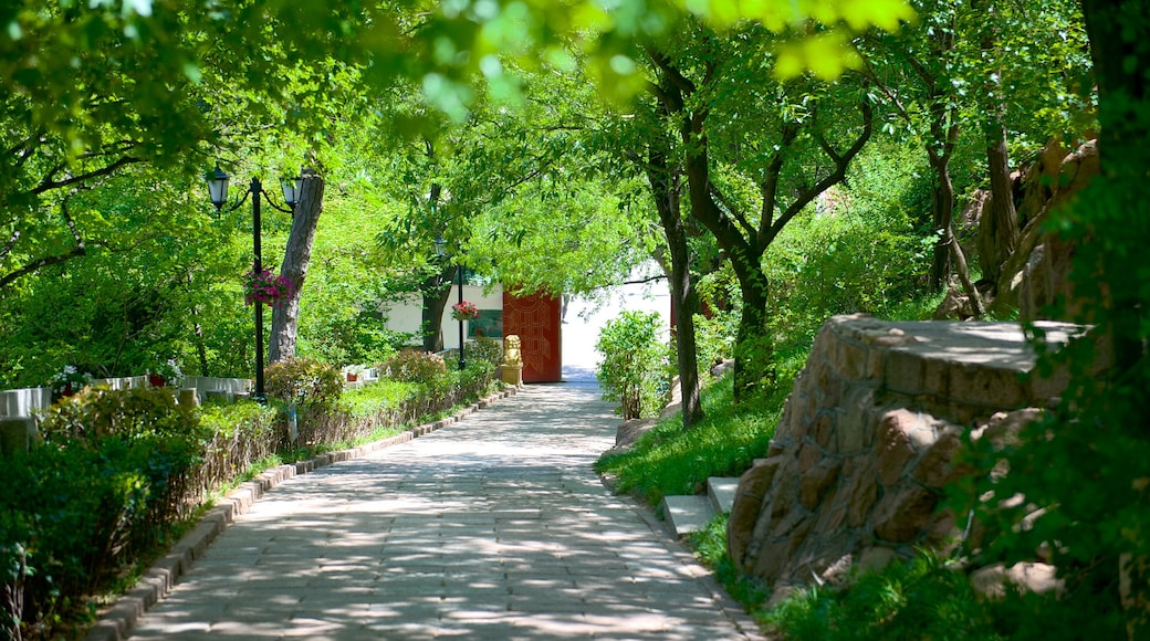 Xiaoyushan Park which includes a garden
