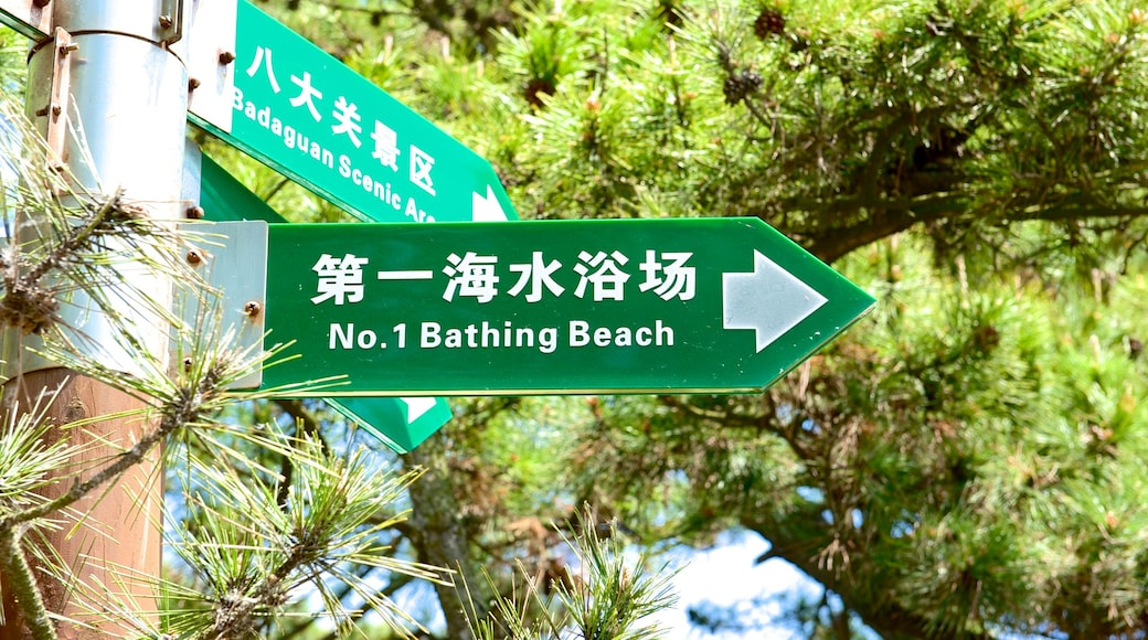 Number 1 Beach featuring signage
