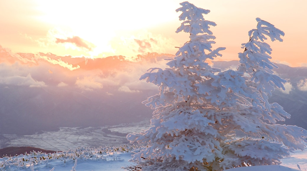 Nagano showing snow and a sunset