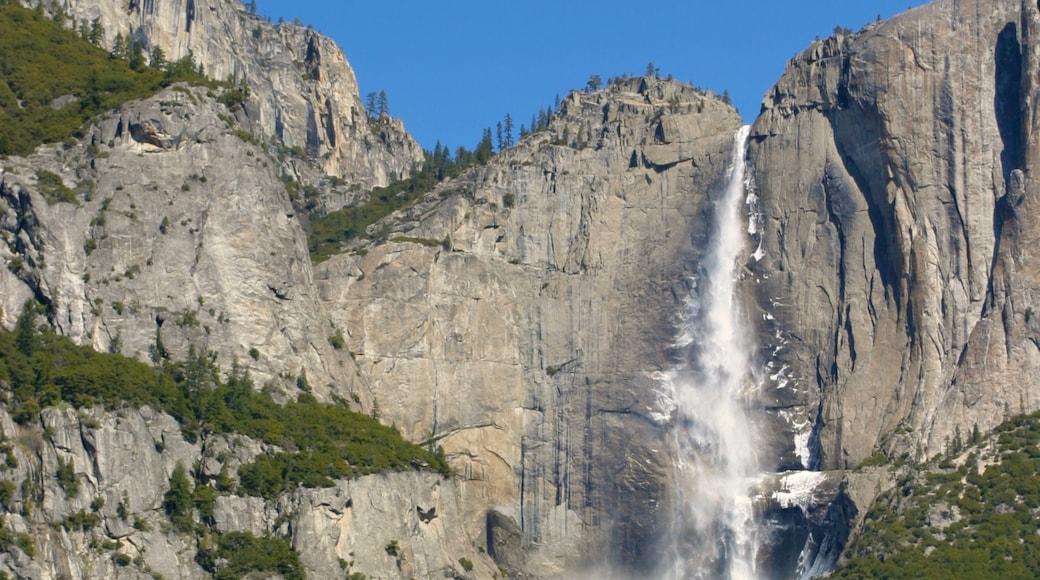 Yosemite Valley welches beinhaltet Berge, Wasserfall und Landschaften