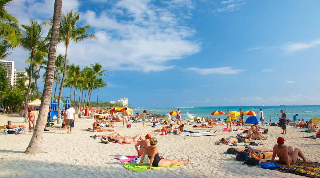Oahu Island which includes a sandy beach and tropical scenes as well as a large group of people