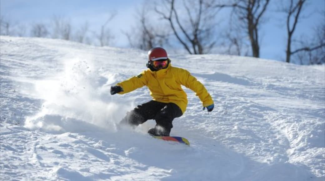 The Berkshires which includes snow and snow boarding