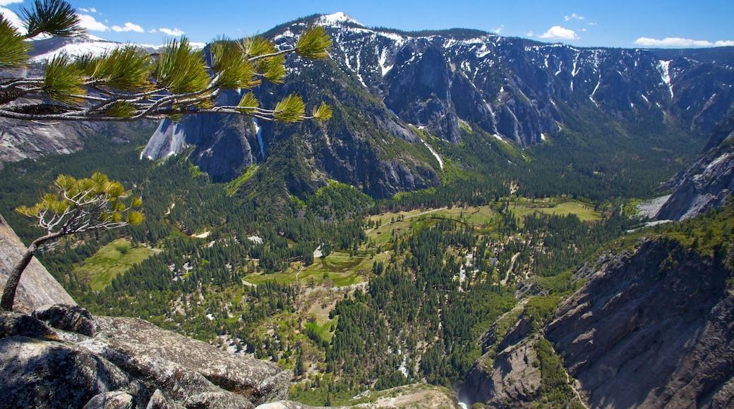 Yosemite Falls featuring mountains