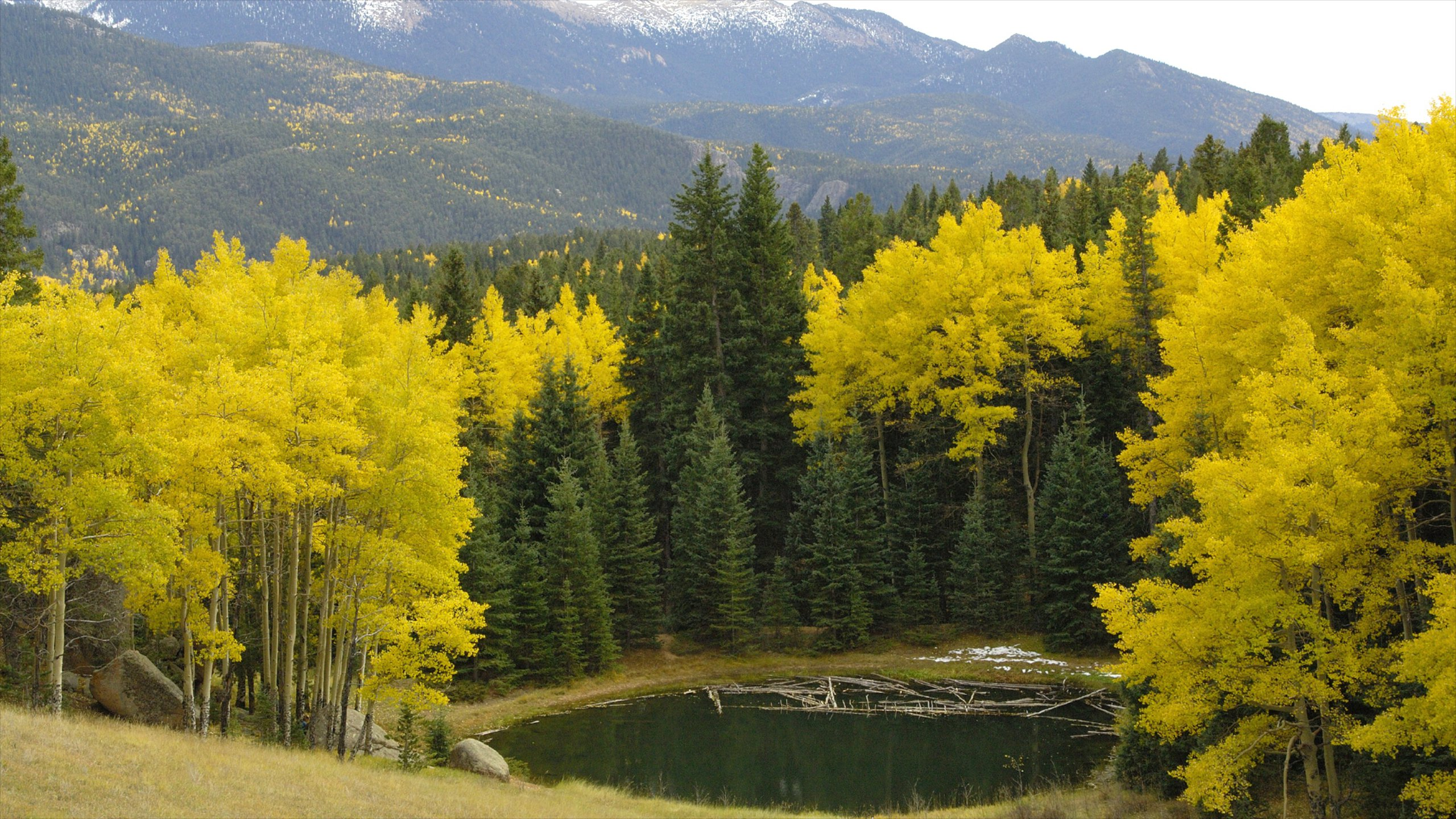 Divide, Colorado, United States of America