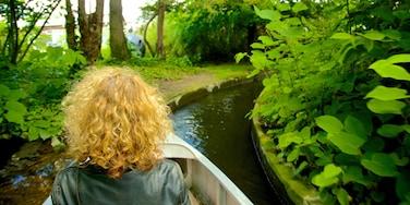 Jardin d\'Acclimatation which includes a garden