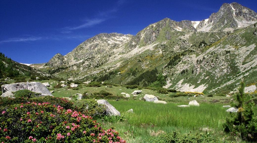 Font-Romeu-Odeillo-Via mettant en vedette montagnes