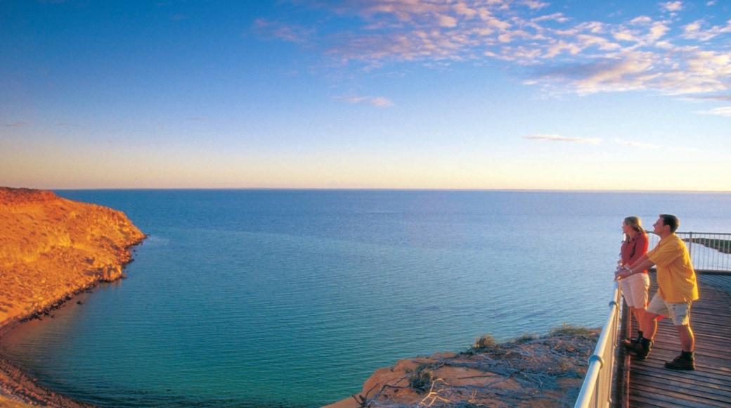 Shark Bay featuring general coastal views, a sunset and views