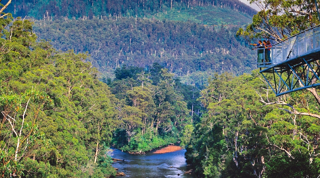 Geeveston which includes a river or creek and forests