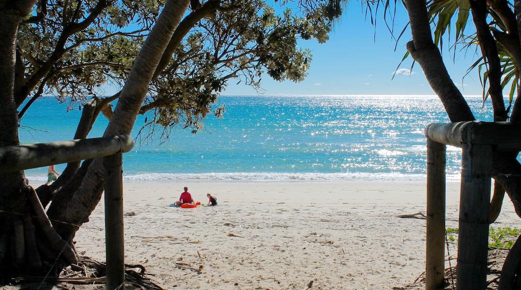 Kingscliff showing general coastal views and a beach