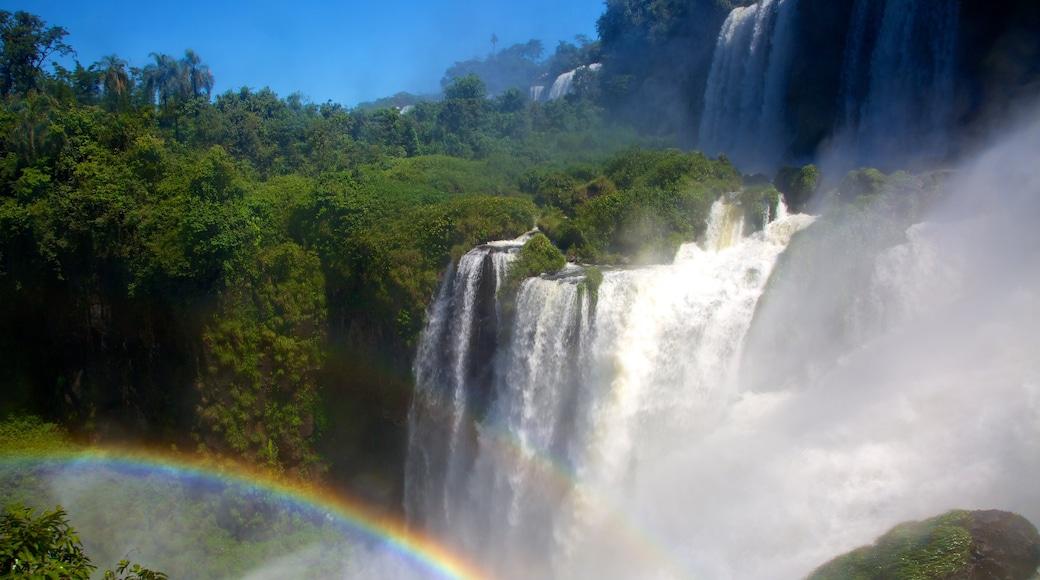 Iguacu Falls which includes a cascade
