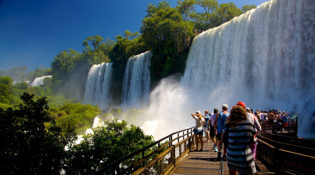 Iguacu Falls featuring a cascade as well as a large group of people