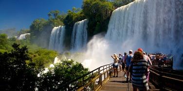 Cataratas del Iguazú ofreciendo una cascada y también un gran grupo de personas