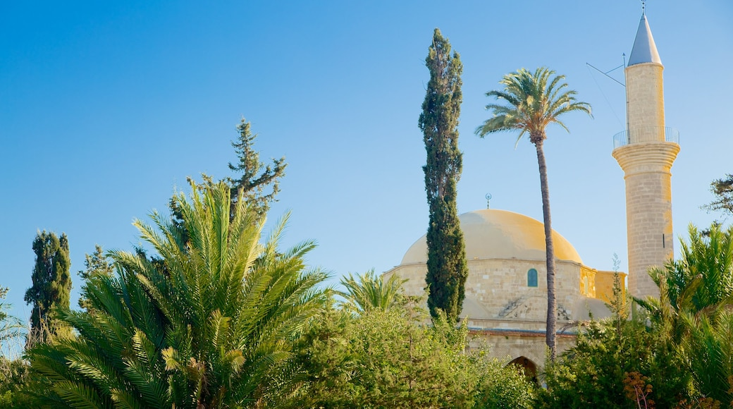 Hala Sultan Tekke showing religious elements, a mosque and heritage architecture