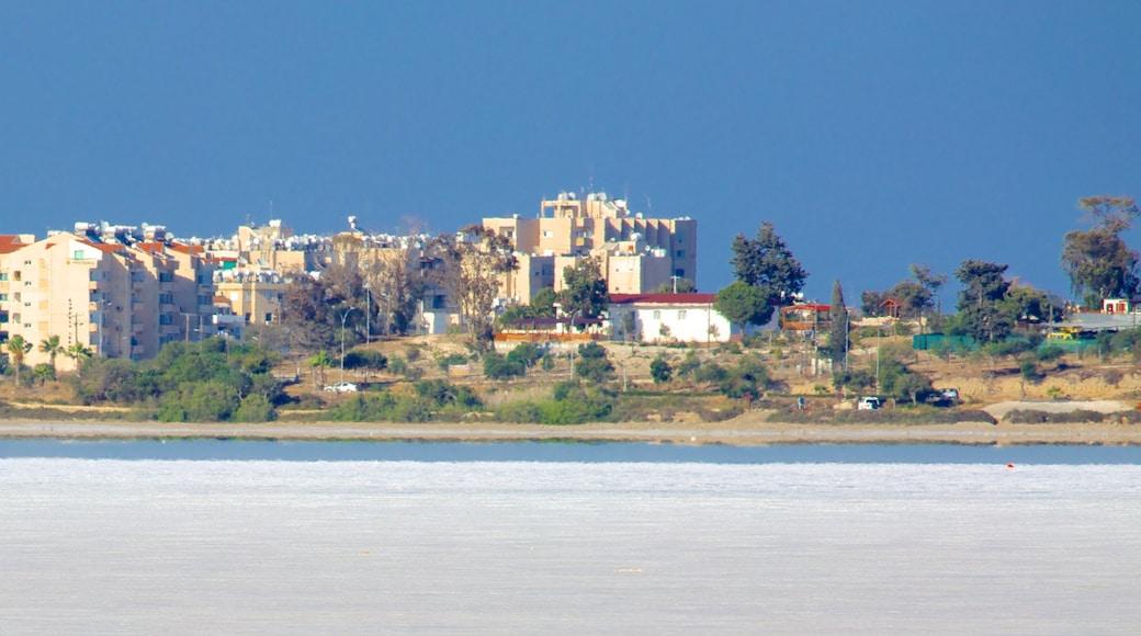 Lac salé de Larnaca montrant vues littorales