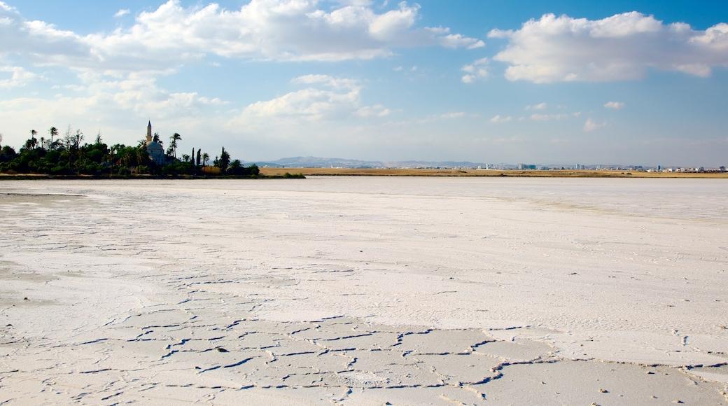 Lac salé de Larnaca qui includes lac ou étang