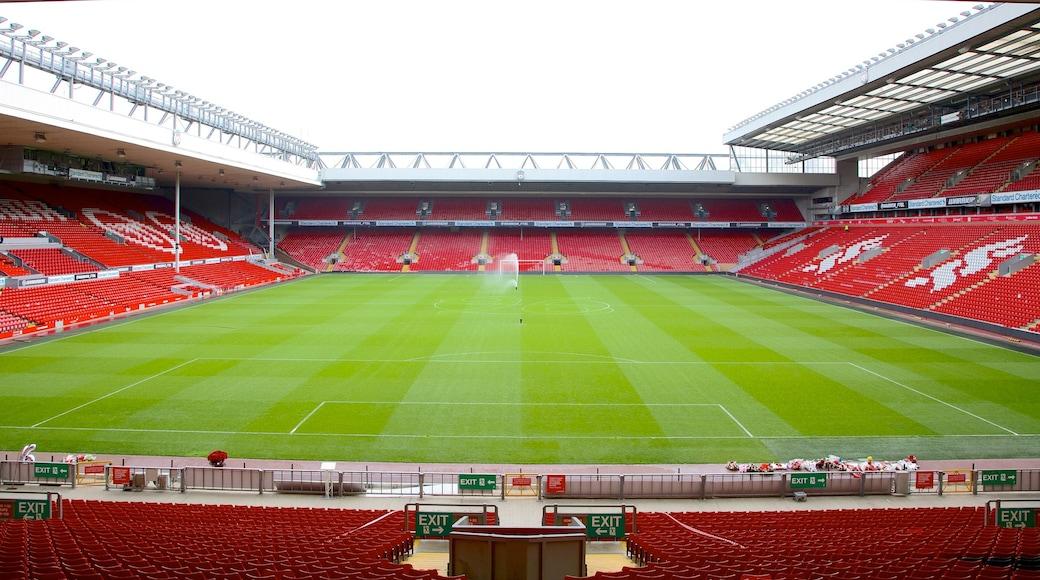 Anfield Road Stadium