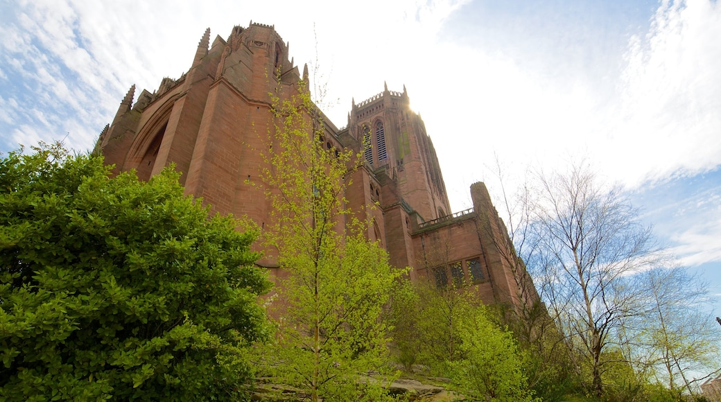 Liverpool Anglican Cathedral featuring religious elements, a church or cathedral and heritage architecture
