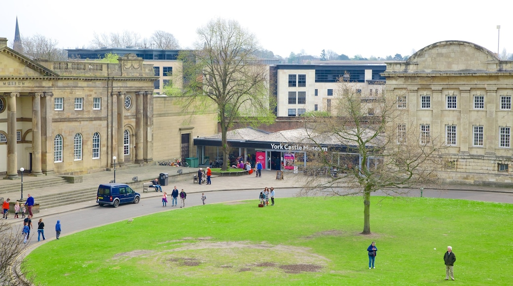 York Castle Museum featuring a park and heritage architecture