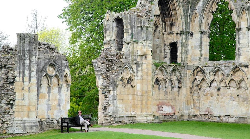 聖母修道院 其中包括 公園 和 遺址