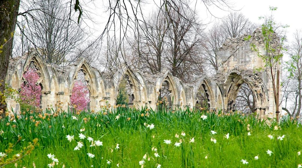 聖母修道院 呈现出 野花 和 遺址