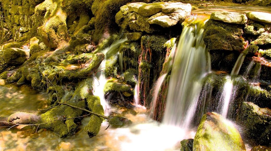 Tal der sieben Quellen Epta Piges mit einem Wasserfall