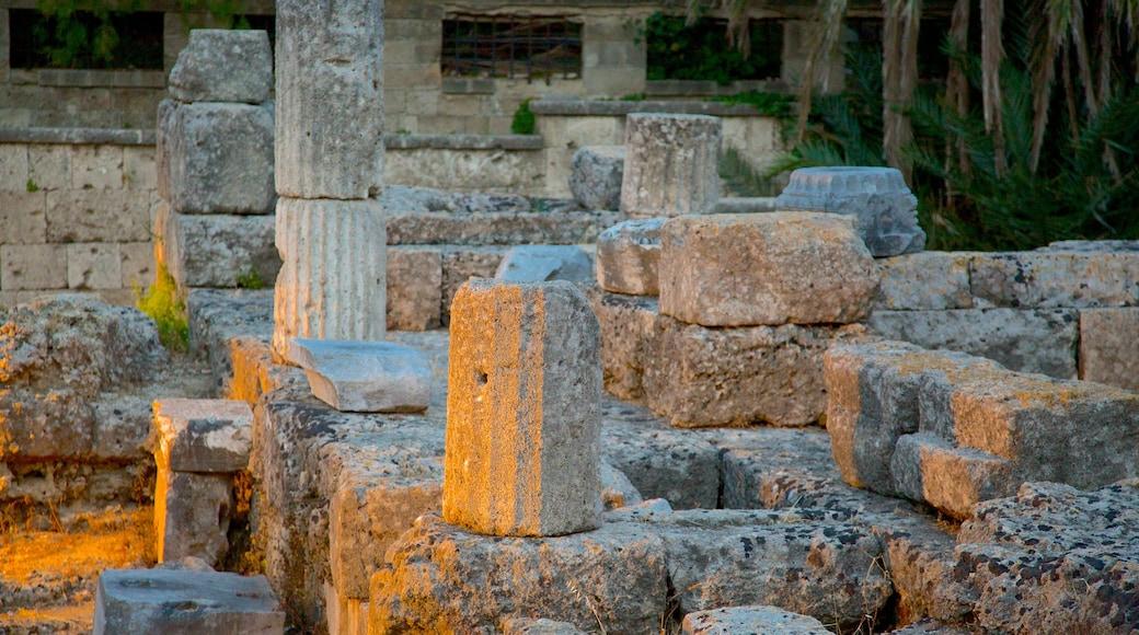Temple of Aphrodite which includes a ruin