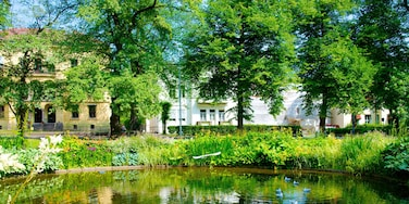 Palace Park showing a pond